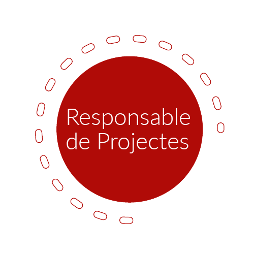Responsable Projectes